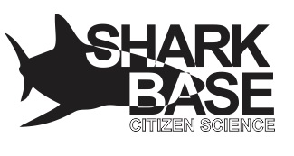 Shark Base Logo