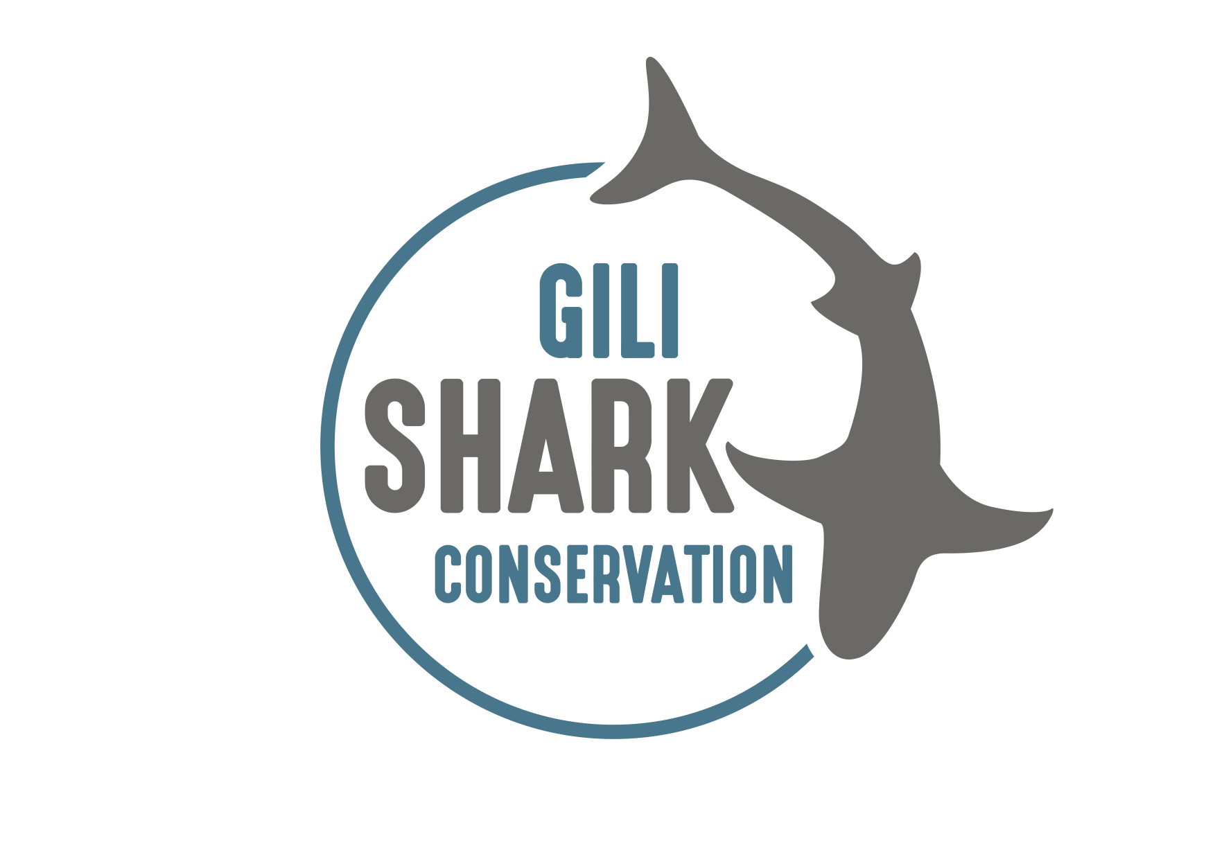 Gili Shark Conservation | Shark & Marine Conservation around the Gili Islands
