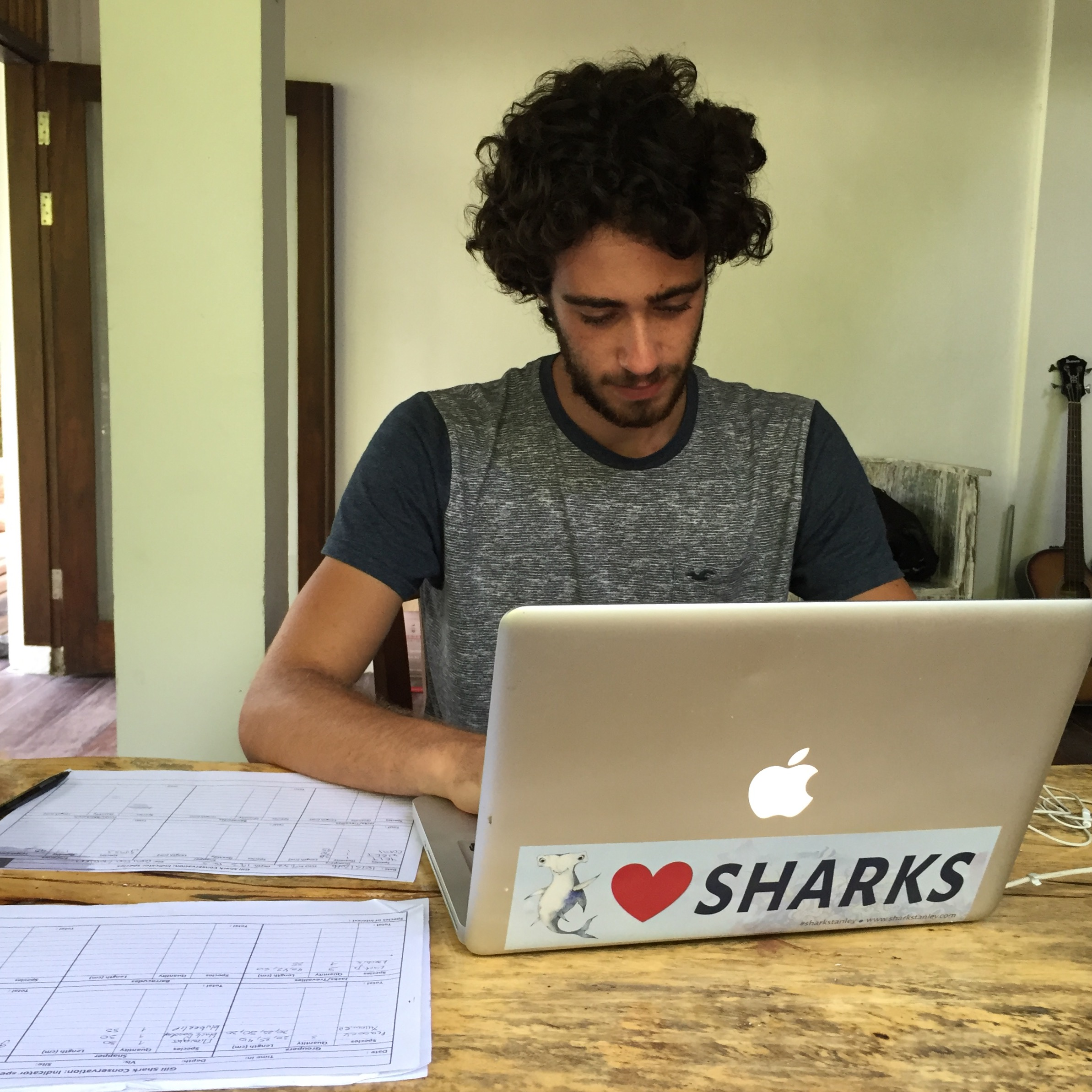 gili-shark-conservation-daily-log-nico-may