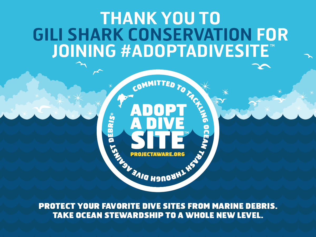 Adopt-a-dive-site-_Gili_Shark_Conservation