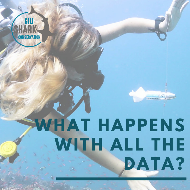 what-happens-with-all-the-data