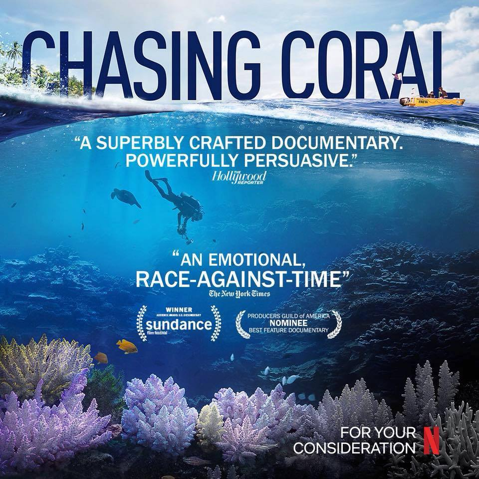 Why Everyone Should Watch The Documentary Chasing Coral On