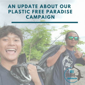 cover-blog-plastic-free-paradise-campaign-gili-islands