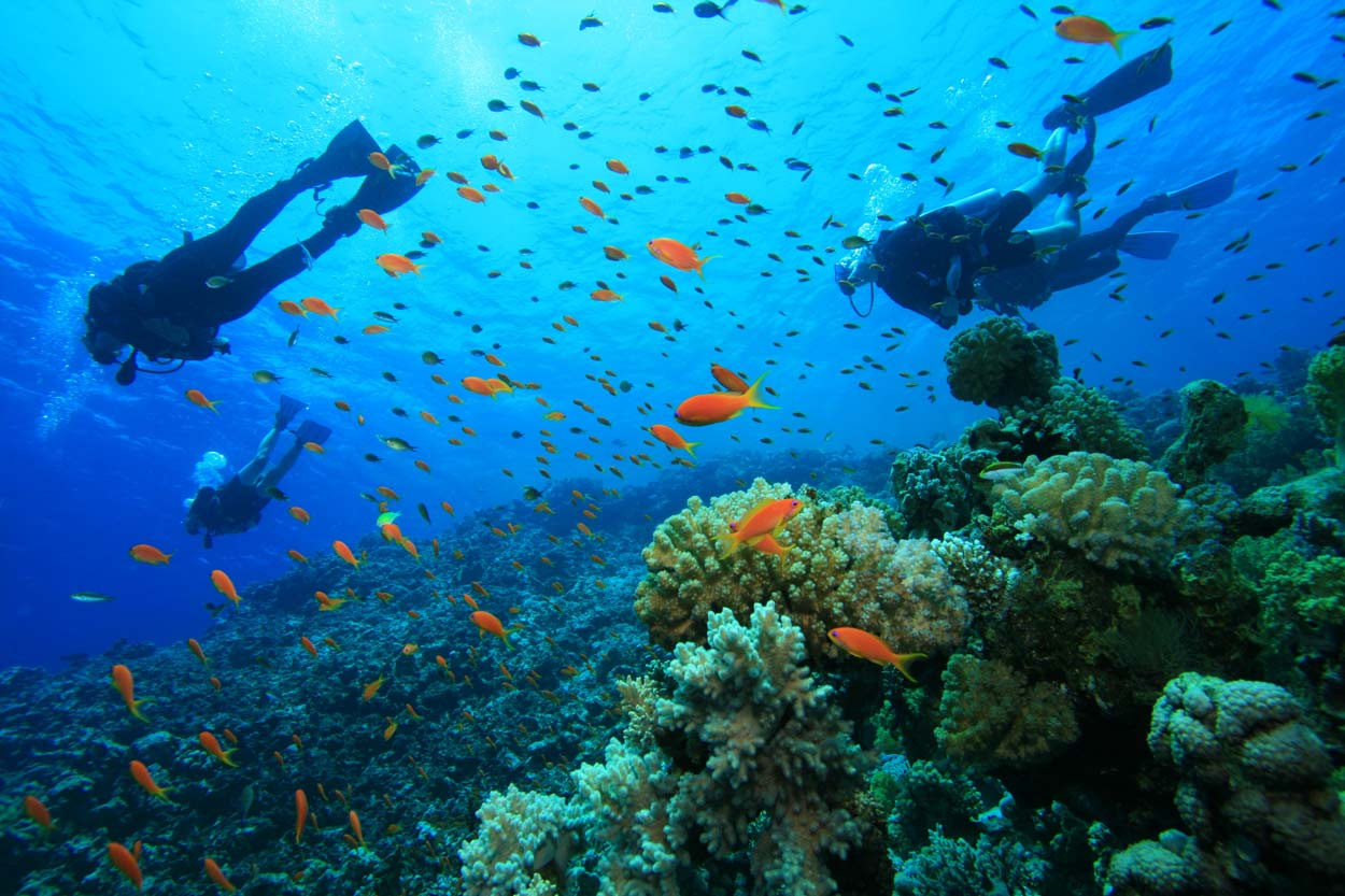 blog-diving-gili-islands-indonesia