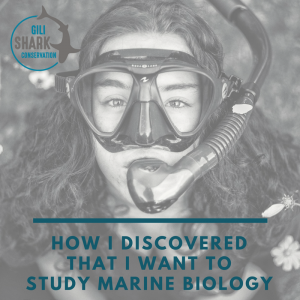 how-i-discovered-i-want-to-study-marine-biology