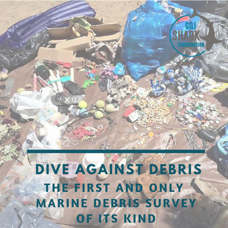 cover-blog-dive-against-debris-gili-islands