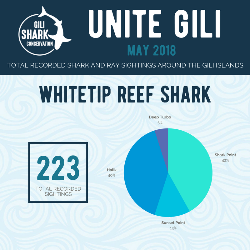 total-recorded-shark-sightings-around-the-gili-islands-indonesia