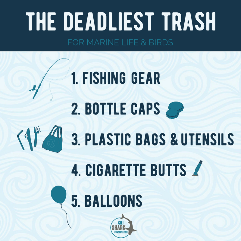 Deadliest-Ocean-Trash--free-infographic-Gili-Shark-Conservation