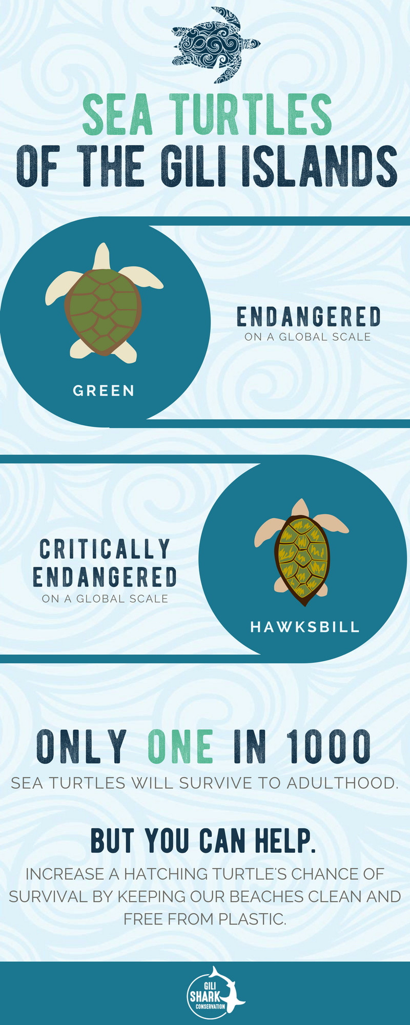 free-infographic-sea-turtles-gili-islands-indonesia