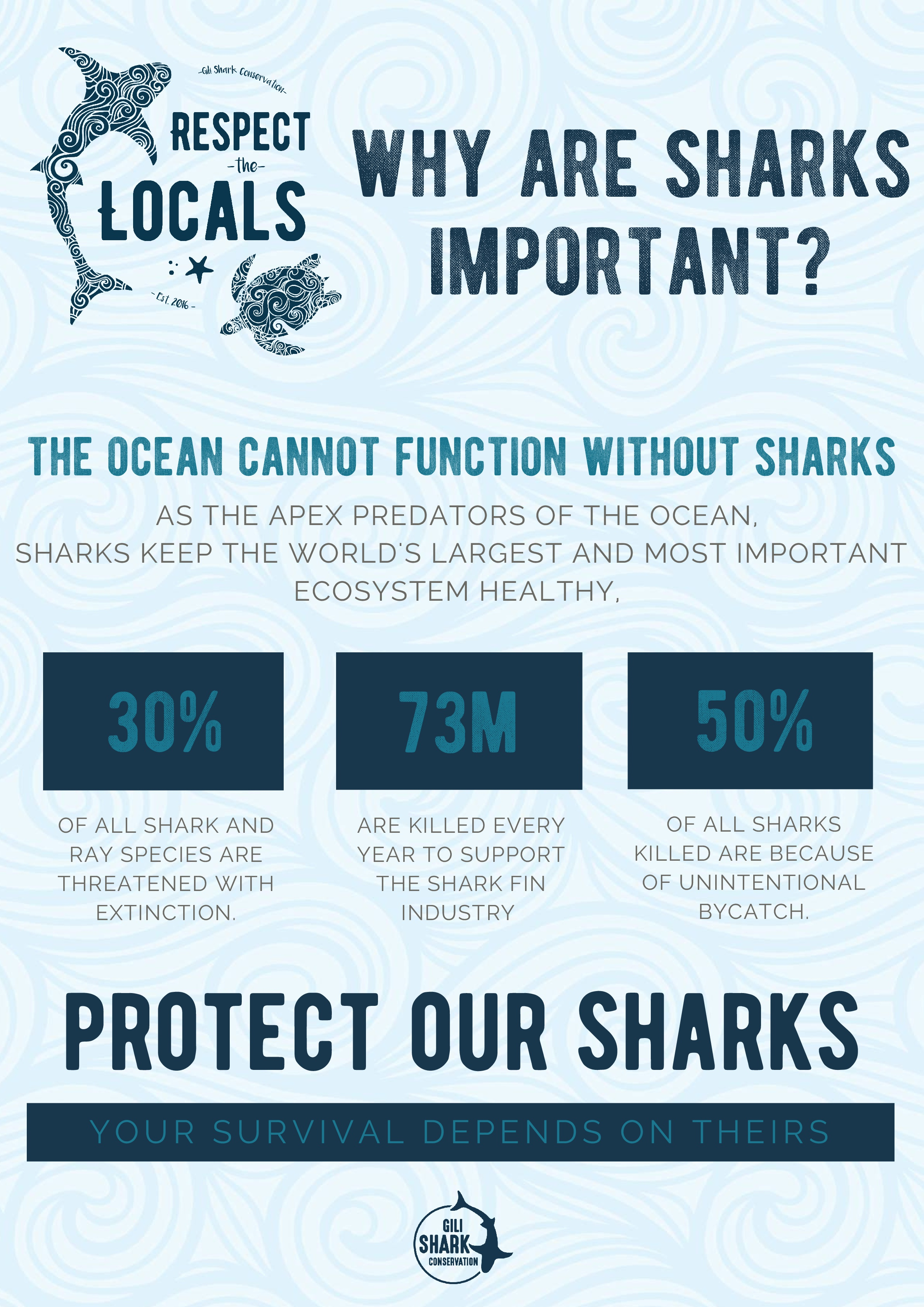 Why-Are-Sharks-Important-free-infographic-Gili-Shark-Conservation