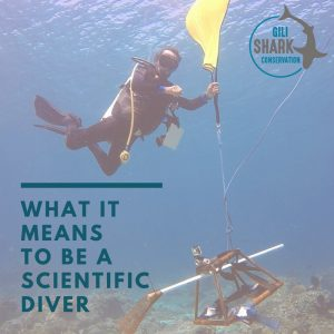 cover-blog-what-it-means-to-be-a-scientific-diver