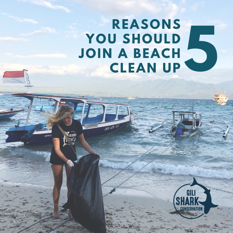 5 reasons to join a beach clean up