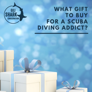 cover-blog-gift-ideas-for-scuba-addicts