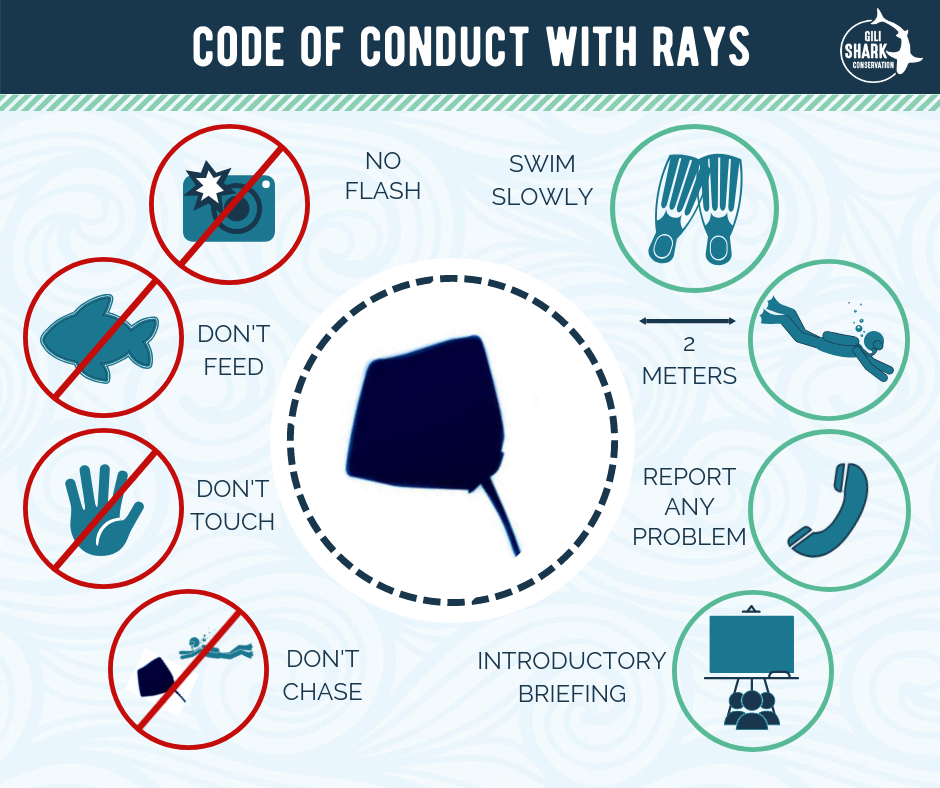 Code of Conduct for Rays
