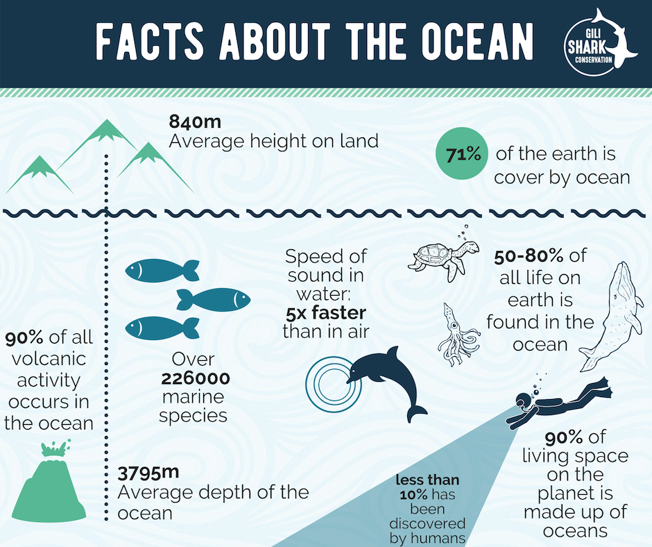 Facts About The Ocean