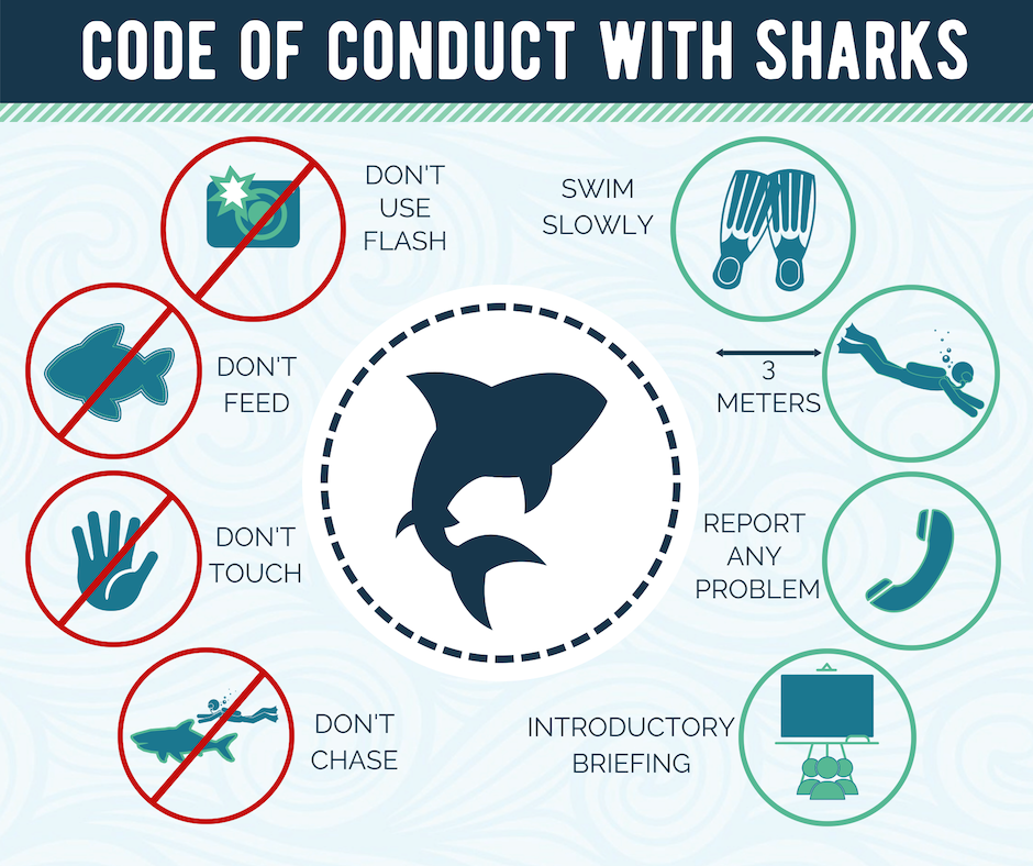 Code of Conduct With Sharks