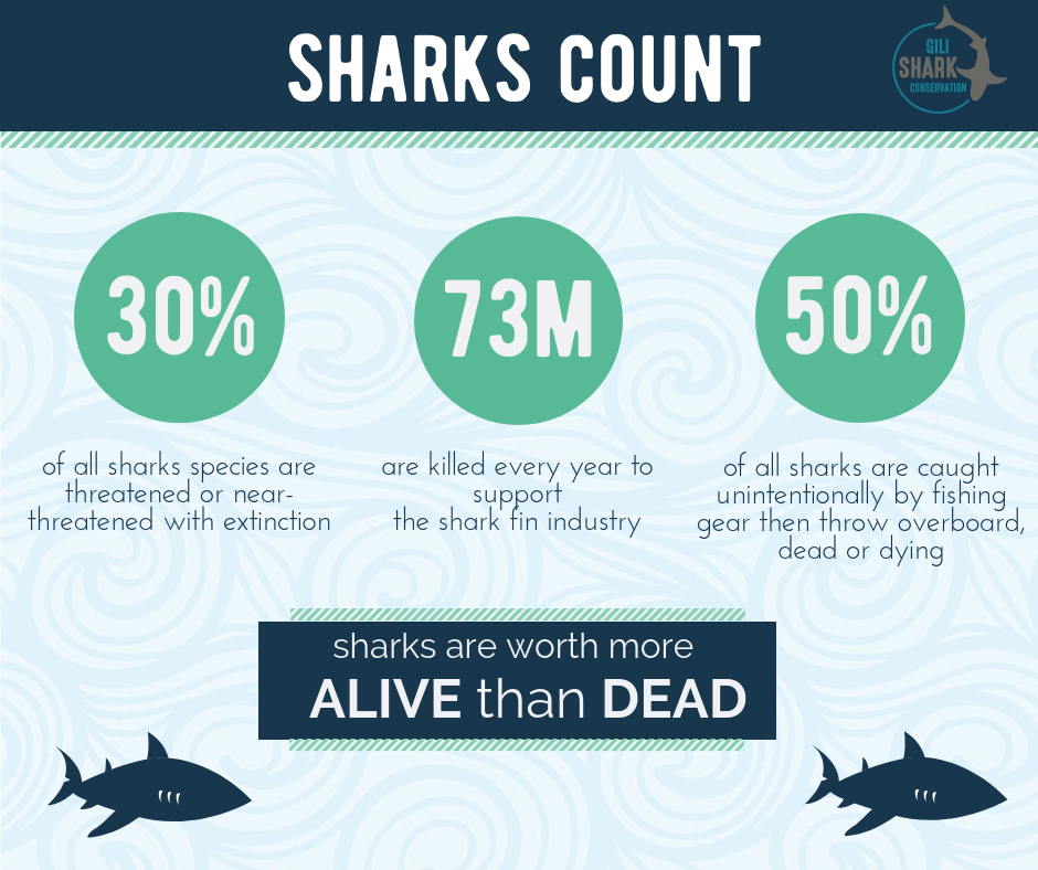 Statistics about sharks