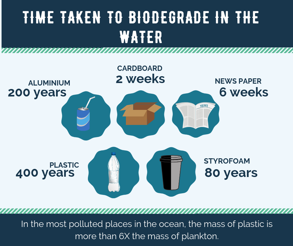 Learn how long it takes for plastic, aluminium and styrofoam to biodegrade in water