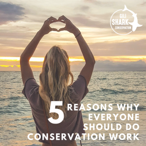 Cover Blog 5 Reasons Why Everyone Should Do Conservation Work