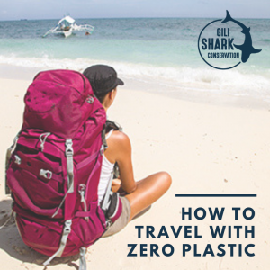 Cover Blog How To Travel With Zero Plastic