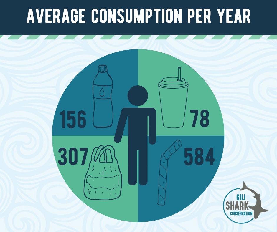 Average Plastic Consumption Per Person Per Year