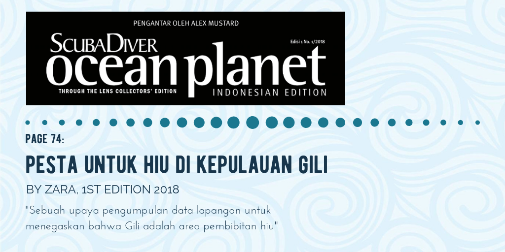 Gili Shark Conservation In The Media