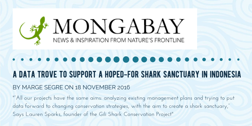 Article About Shark Conservation In Indonesia In Mongabay