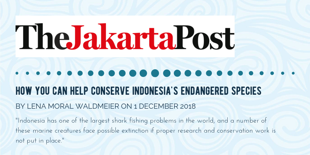 Press Mention In The Jakarta Post - Gili Shark Conservation Project