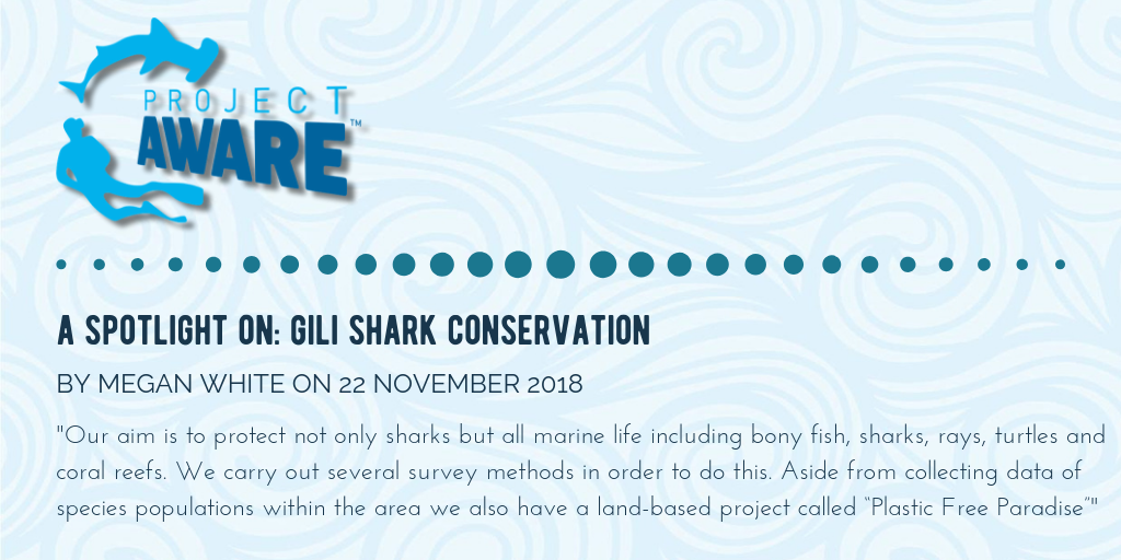 Article About Shark Conservation on Project Aware Website