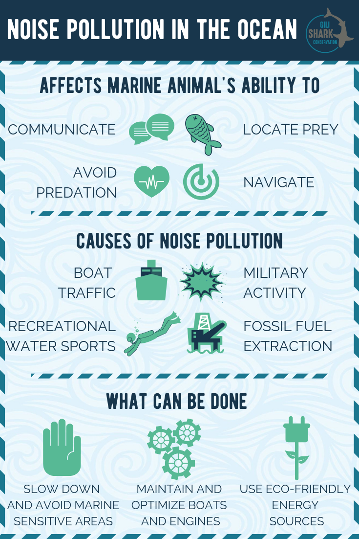 Noise pollution in the ocean