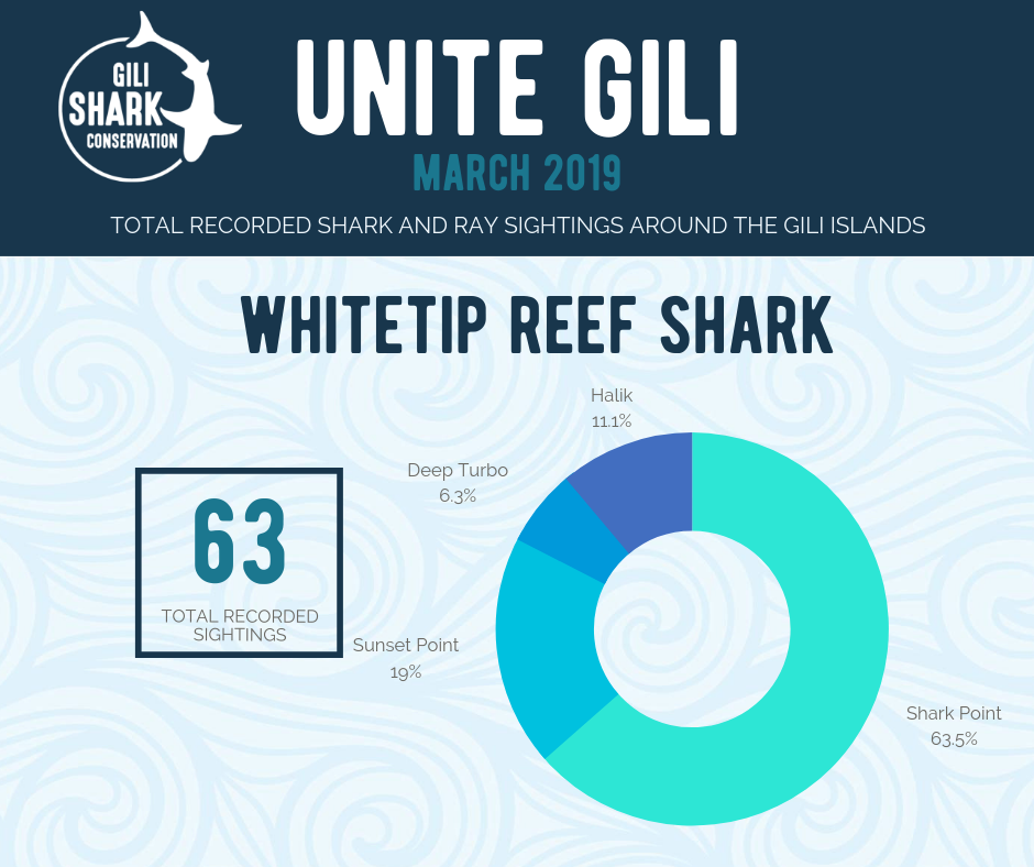 All dive shops around Gili Air are part of Unite Gili which is a citizen science project that collects sighting of sharks and rays around the Gilis.