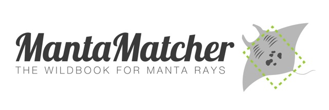 Manta Matcher allows you to identify manta rays by uploading your photo of the manta ray's underside