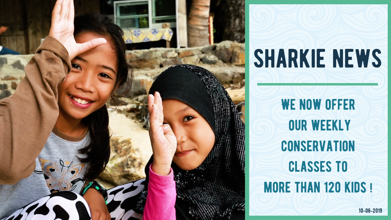 Sharkie News: Weekly Conservation Classes for the Kids On Gili Air