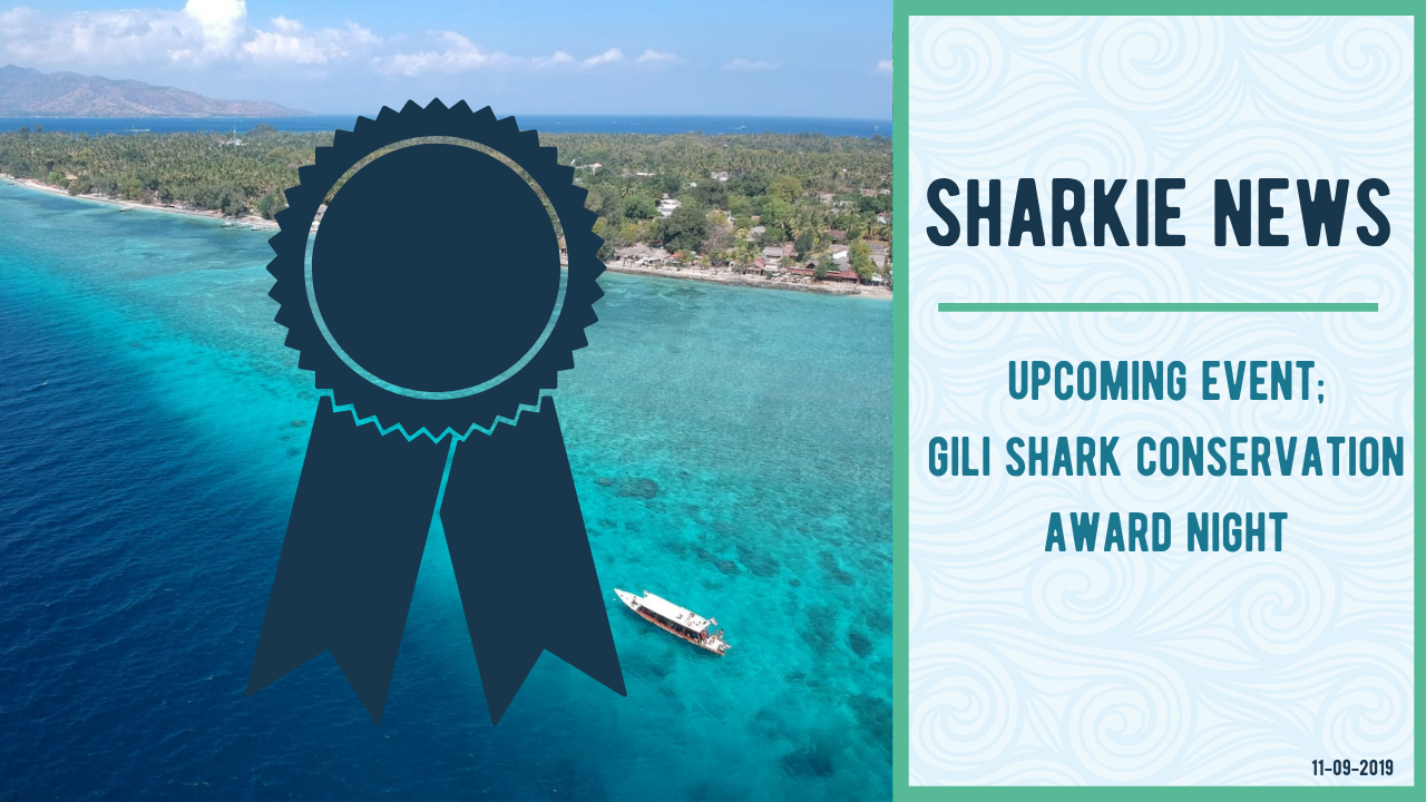 Sharkie News - Catch Up Event
