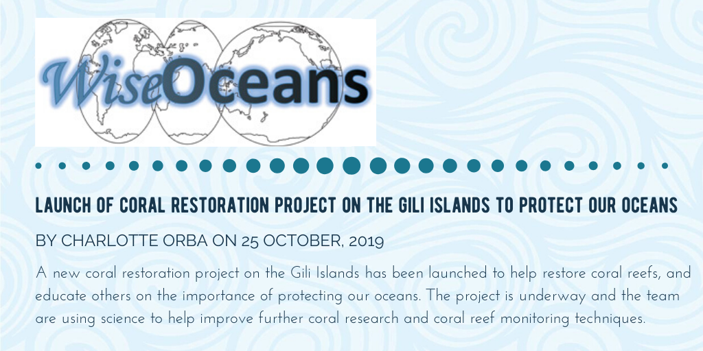 What others say about the gili shark conservation project in Indonesia