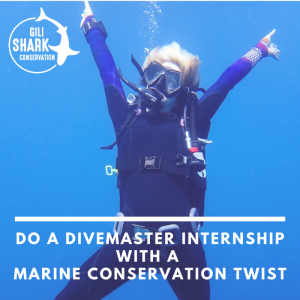 Do a divemaster internship with a conservation twist