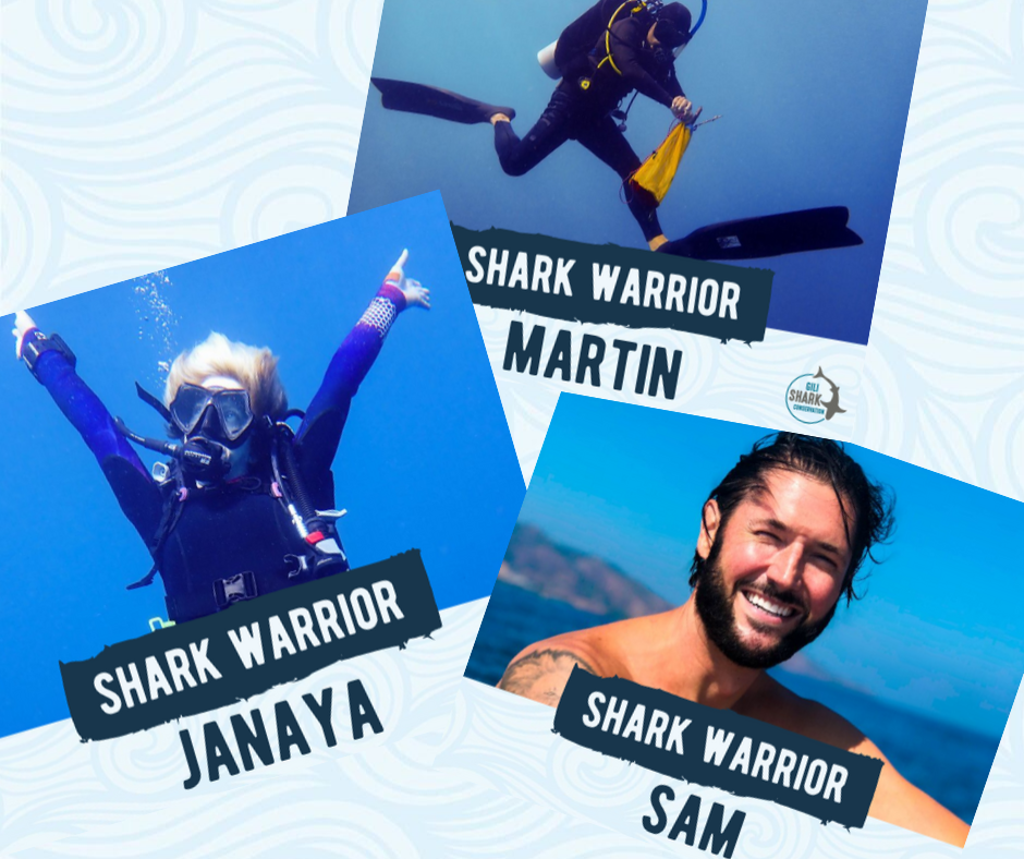 Hear from current Divemaster interns what they like most about it! Most of them love the awesomeness of being able to do marine conservation alongside their Divemaster
