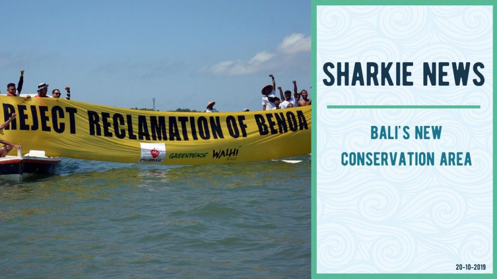 Sharkie-news-Balis-New-Conservation-Area