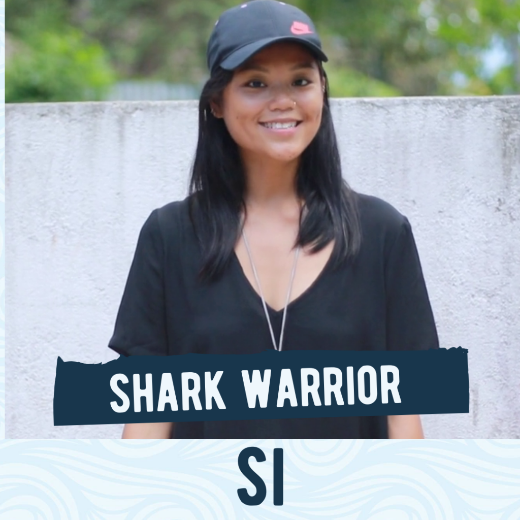 Expand your world and become a shark warrior in paradise