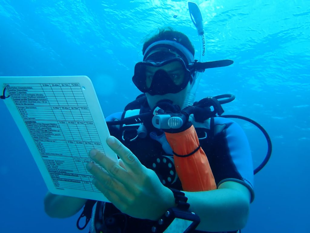 marine research program, scientific diving, reef check survey